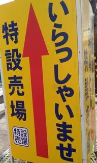 0226_umedatokusetu.jpg