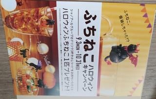 fuchi_cat_Halloween_promotion20181031_2.jpg